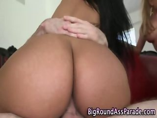 Big ass babes pussies slammed