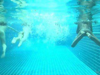 4 little mermaids in a pool