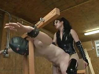 Mistress gives her doggy a rough fucking!