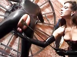 Latax slave gets used by Mistress in everyway she wants.