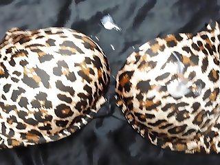 Cumming on Teen Victoria Secret Cheetah Print Bra