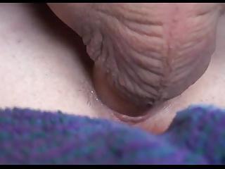 balls deep creampie
