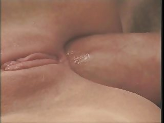 Sweet Pussy, Tight Ass, and Hard Cock