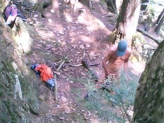 Forest stroking #4