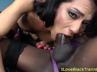 Bareback tranny babes in hot twosome
